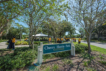 Hurricane Irma Cleanup at Clearwater's Cherry Harris Park and Throughout Greenwood