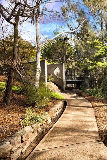 Il paesaggio che fa da cornice alla Chiesa di Sydney
