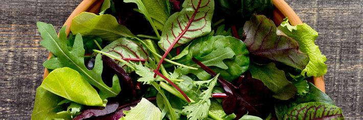 Breaking News: Scientologists Eat Salad!