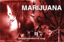 The Truth About marijuana Drugs