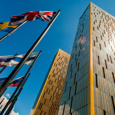 The EU Court's Decision—What Equality?